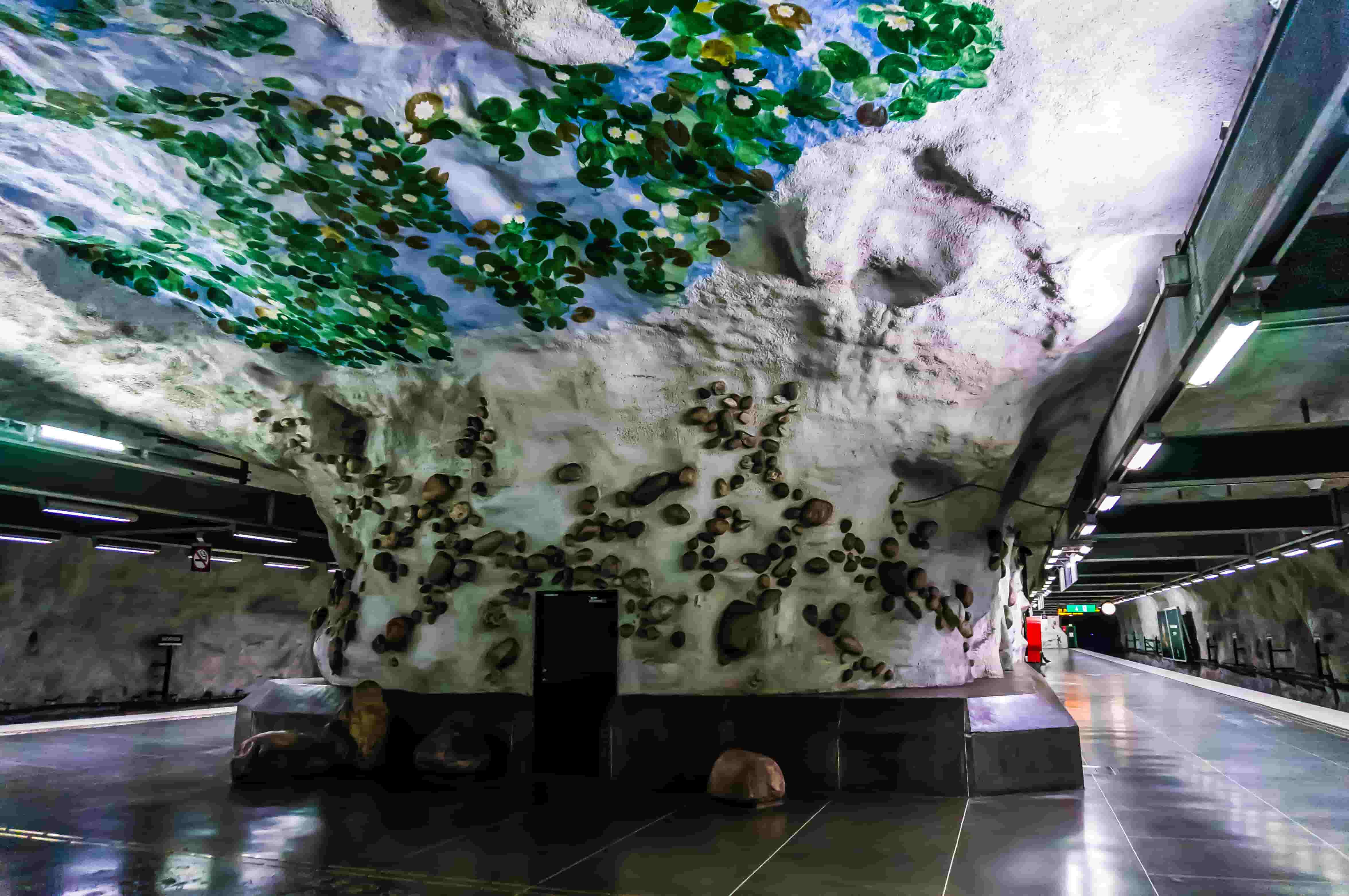 tunnelbanan-näckrosen stockholm