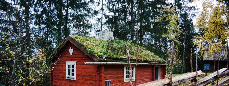 Skansen. Швеция в миниатюре
