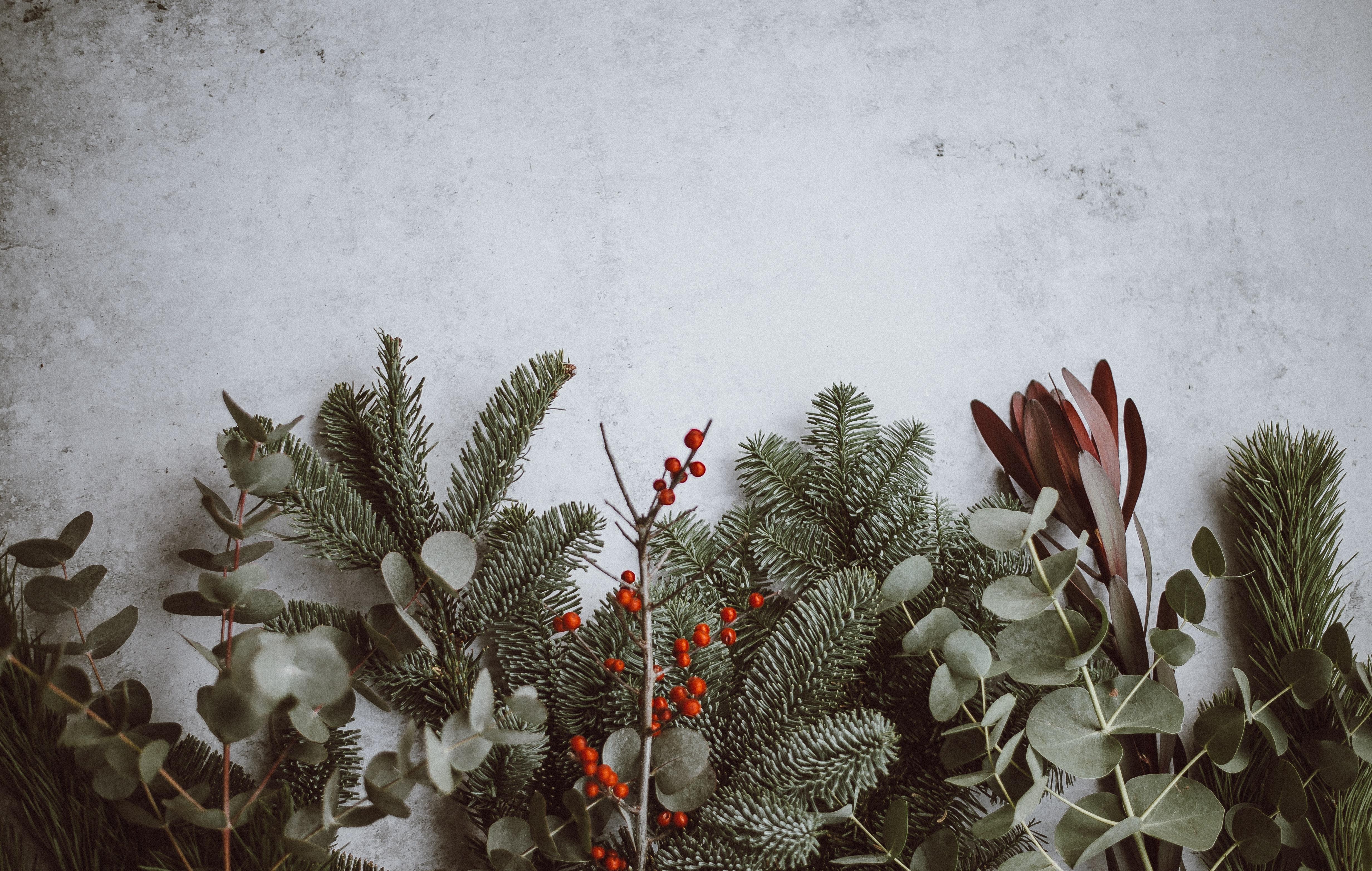 Как шведы украшают дом к Рождеству
